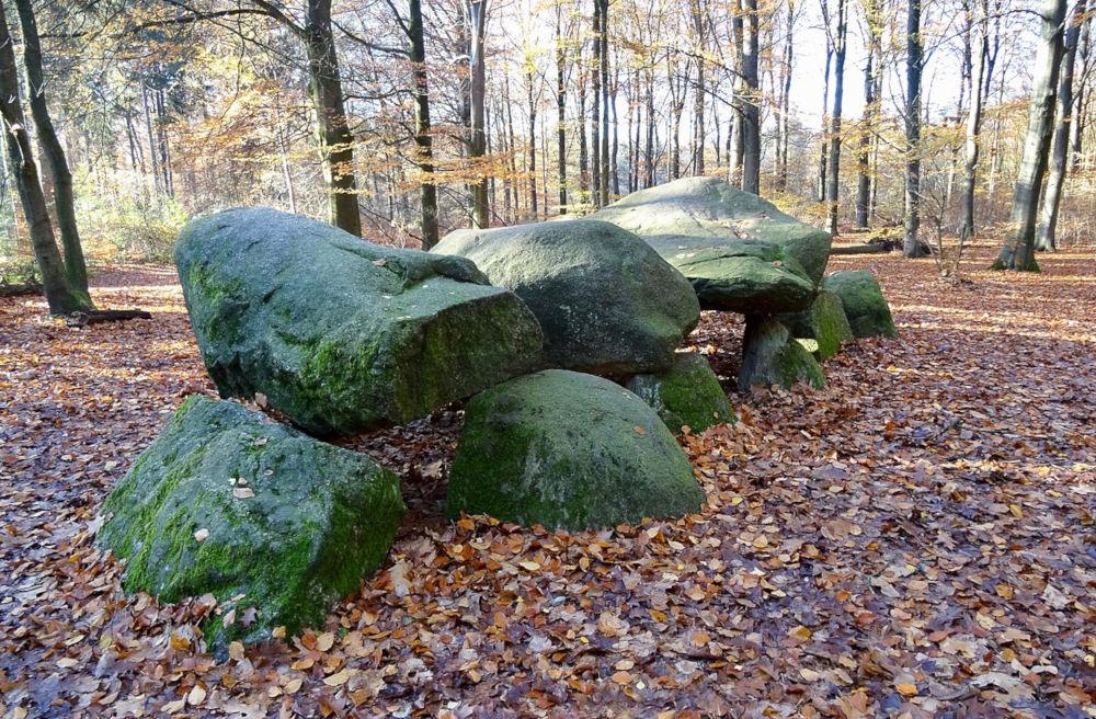 dolmen d11 boswachterij anloo