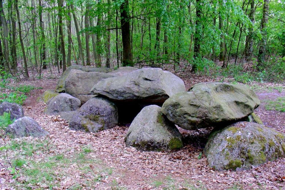 dolmen d7 kniphorstbos
