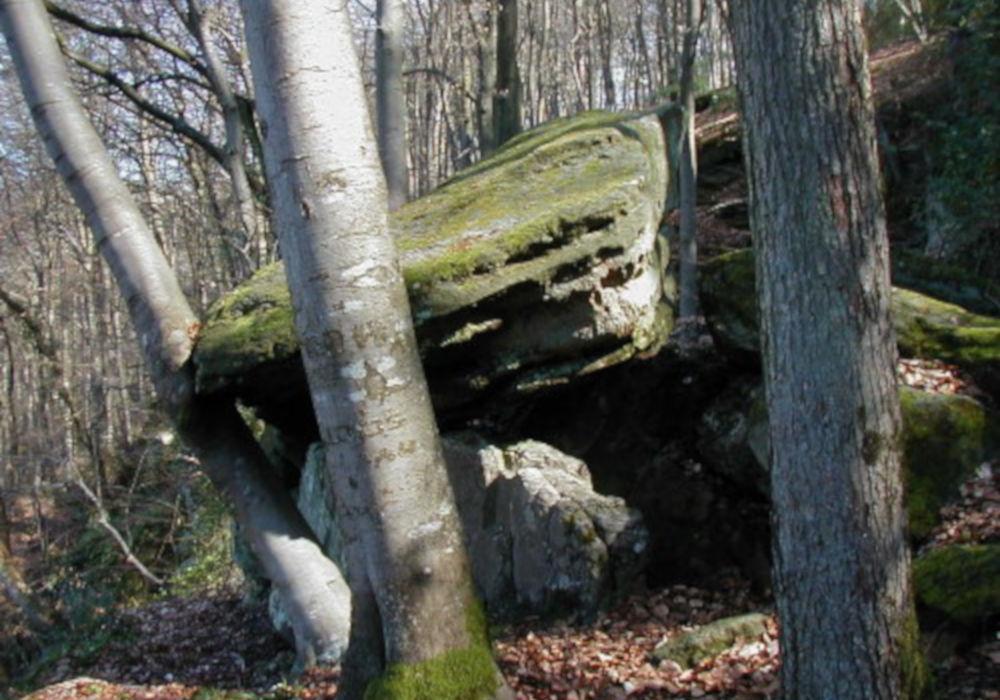 schnellert pseudo-dolmen