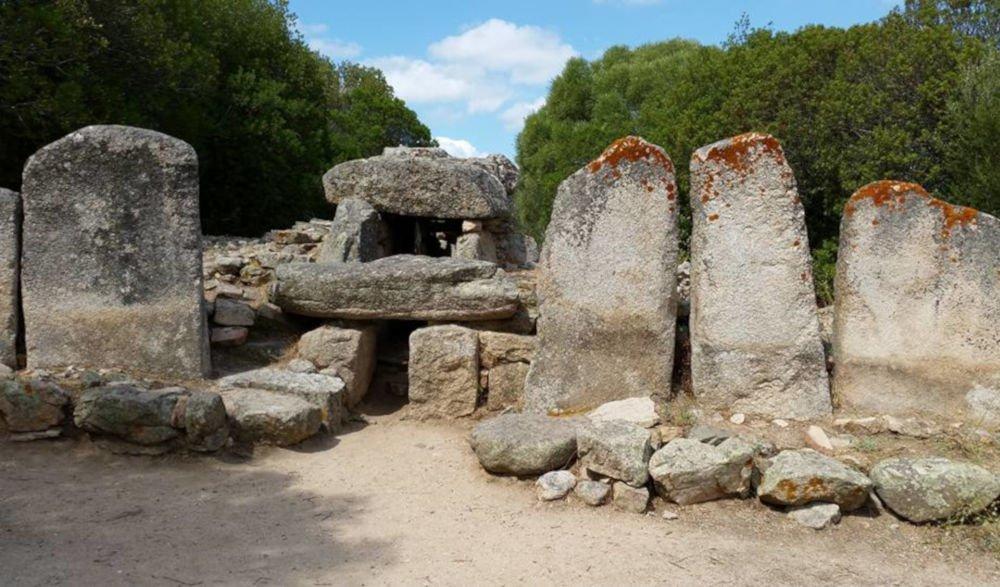 The giants' grave of Su Monte de s'Ape