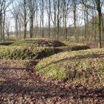 burial field het heike