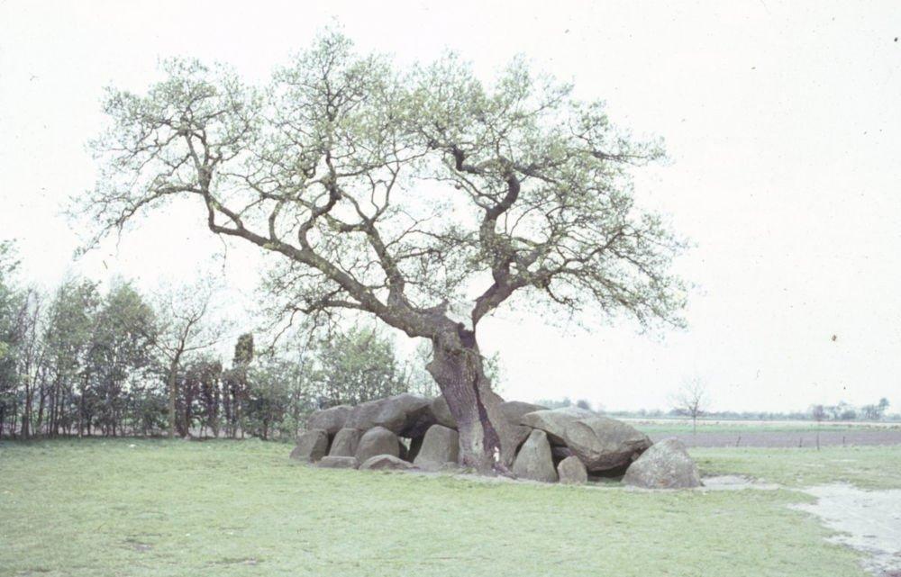 dolmen d17