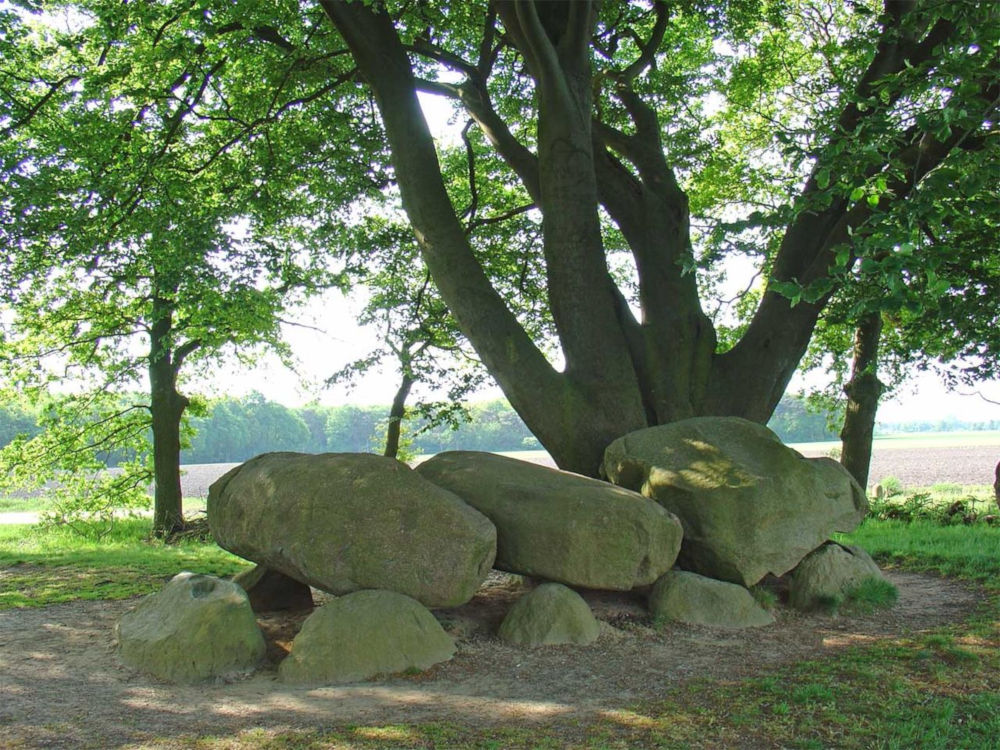 dolmen d21