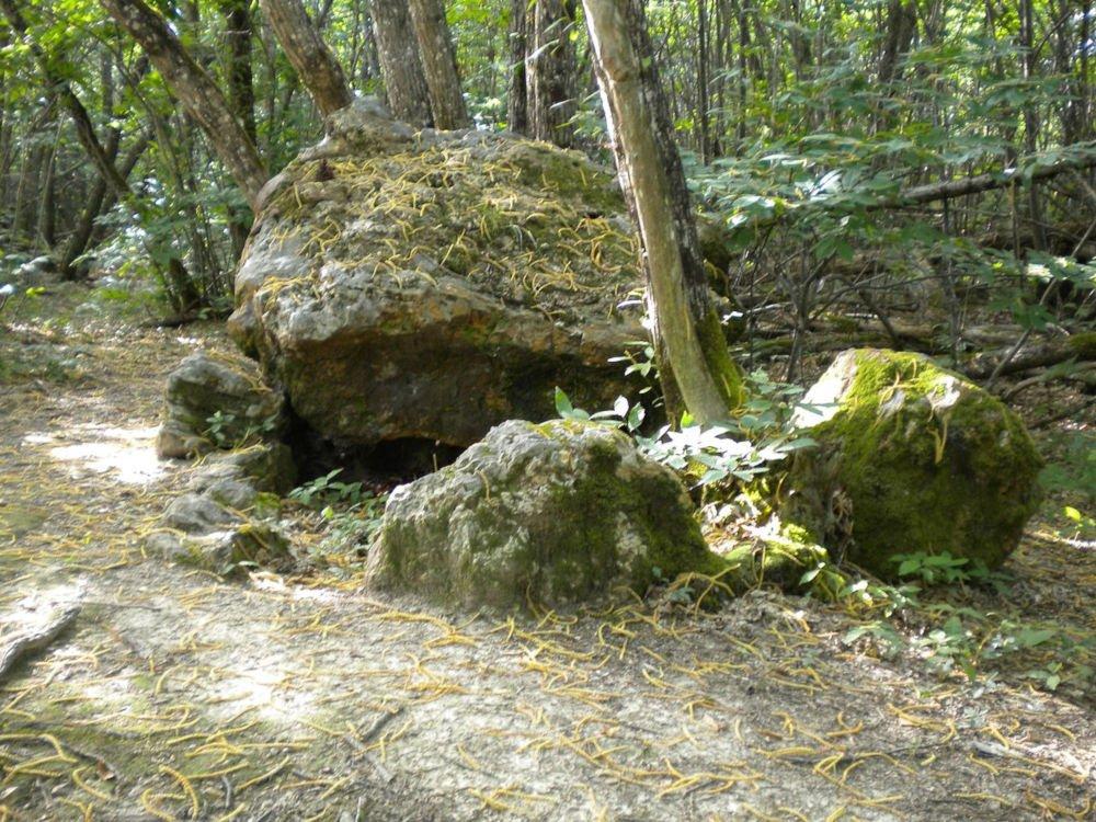Dolmen Peyre-Brune