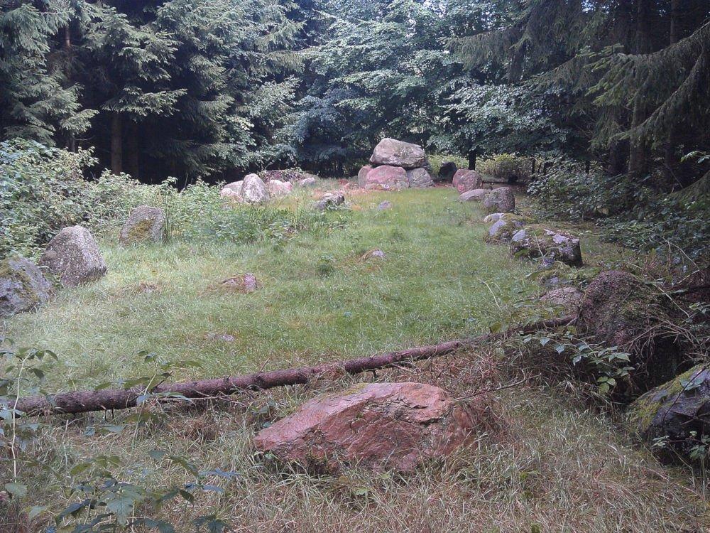 Langdysse in Avnede Skov