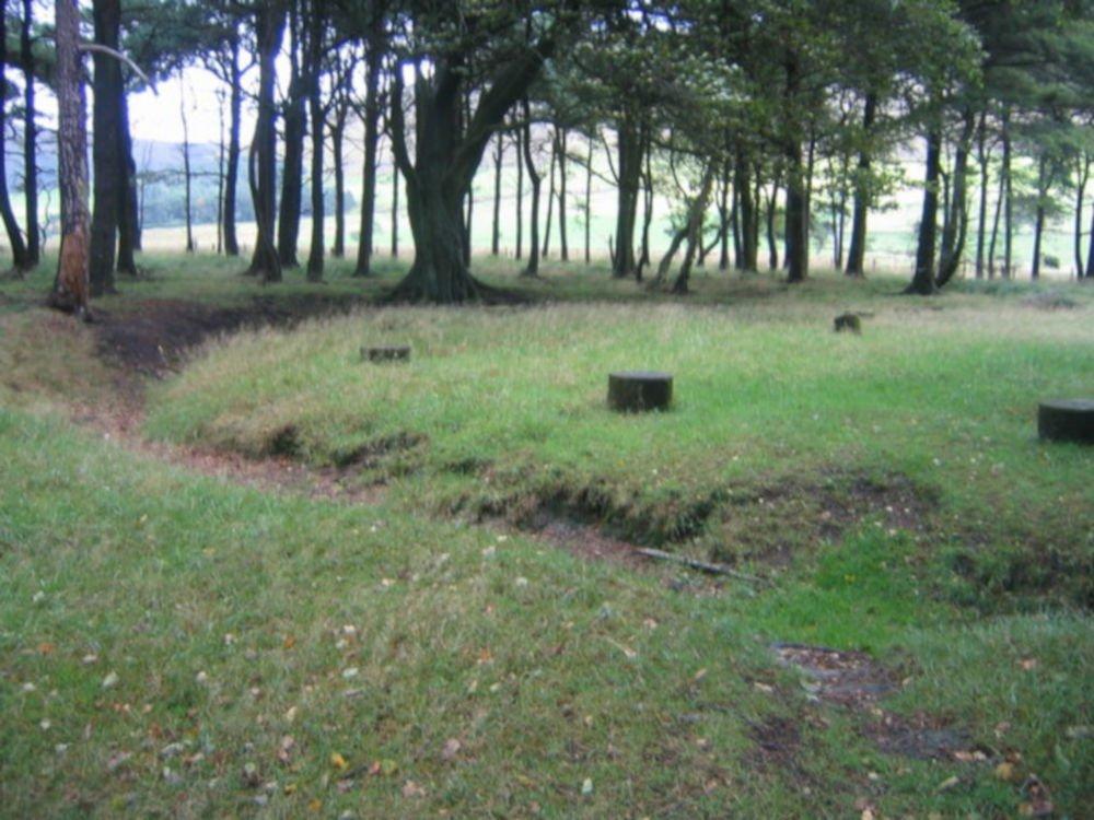 bleasdale timber circle