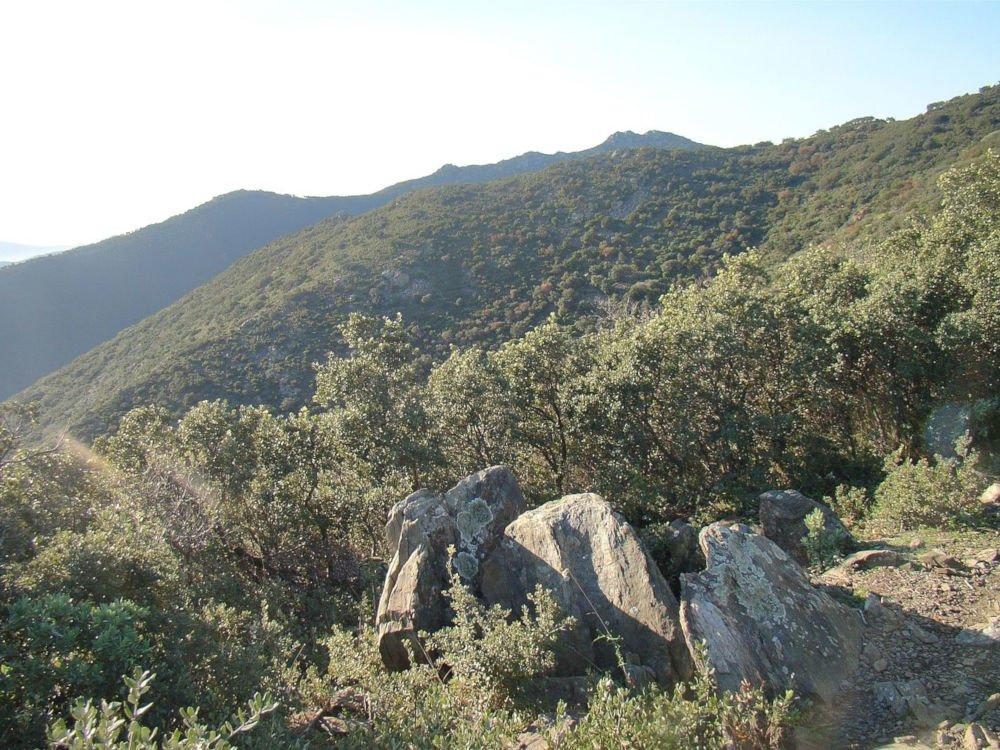 coll de la farella dolmen