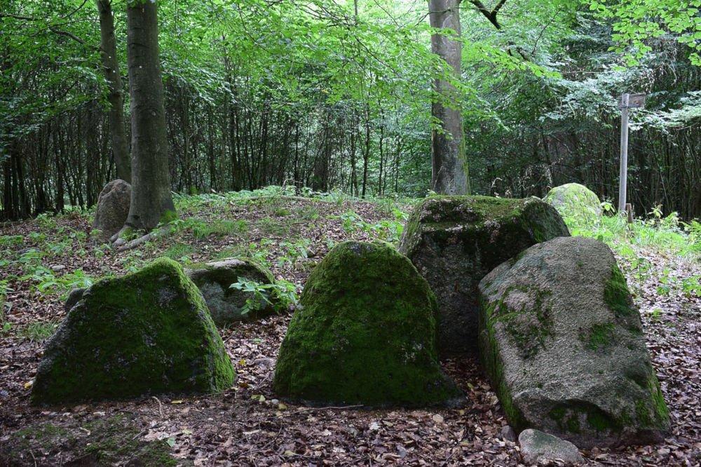 Dolmens at Dambeck