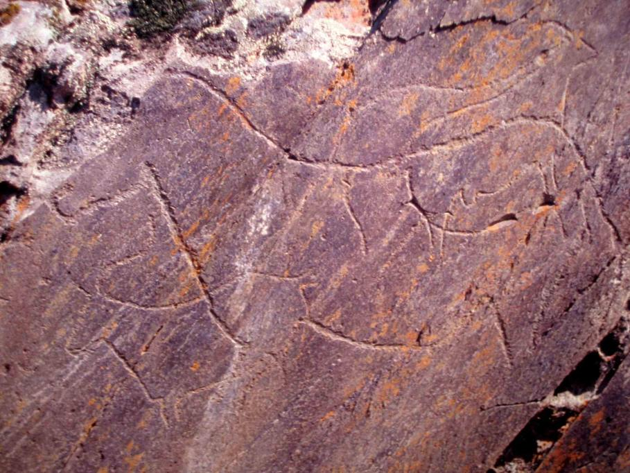 Rock Art Sites of the Côa Valley