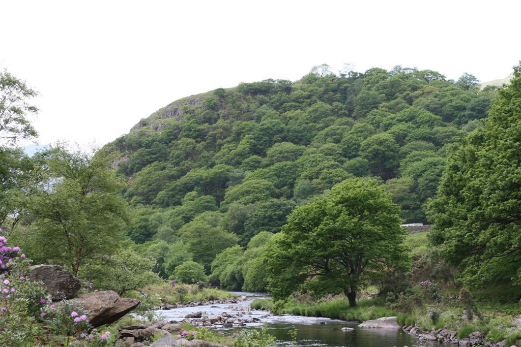 Dinas Emrys (Welsh for 'Emrys's fort')